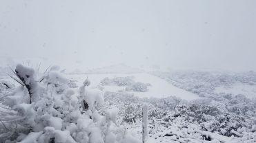 Schnee in Chessa